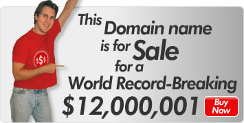 This Domain name is for Sale for a World Record-Breaking $12,00,001