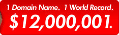 1 Domain Name 1 World Record $12,000,001